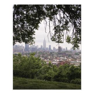New York Skyline Through Trees Photo
