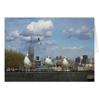 New York Skyline with Seagulls Card