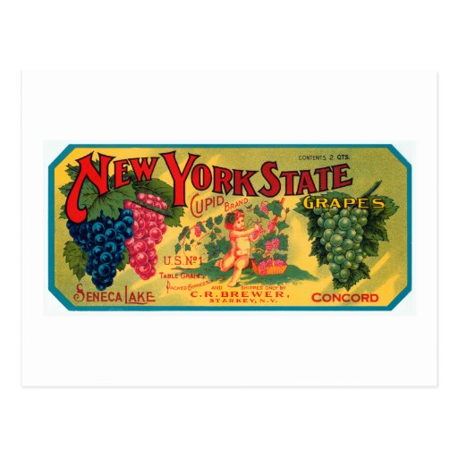 New York State Grapes Post Card