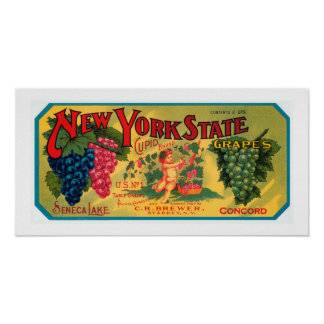 New York State Grapes Poster