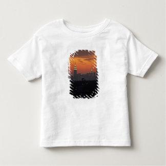New York, USA. Skyline of uptown Manhattan Toddler T-Shirt