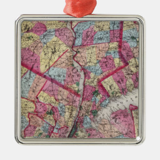 New York & vicinity Christmas Ornament
