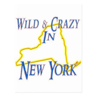 New York - Wild and Crazy Postcard