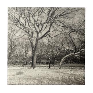New York Winter - East Village Snow Tile