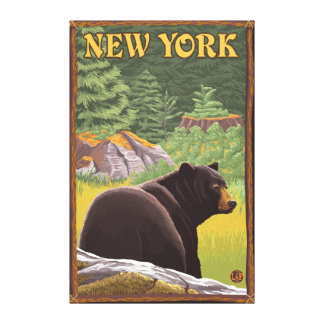 New YorkBlack Bear in Forest Canvas Print