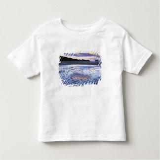New Zealand, Abel Tasman National Park, Coast Toddler T-Shirt