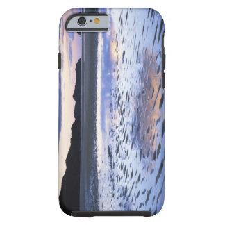 New Zealand, Abel Tasman National Park, Coast Tough iPhone 6 Case