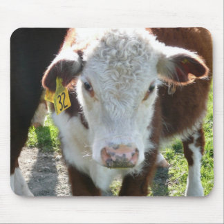 New Zealand Cow Mouse Mat