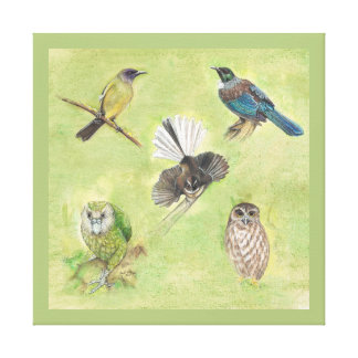 New Zealand Forest Birds Watercolour Canvas Print