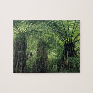 New Zealand, Haast Valley, Westland, Soft Tree Jigsaw Puzzle