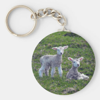 New Zealand Lambs Keychains