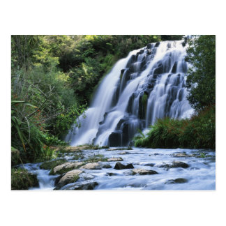 New Zealand, North Island, Karangahake Gorge, Postcard