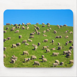 New Zealand, South Island, Canterbury Mouse Mat