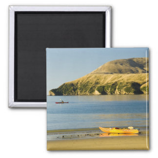 New Zealand, South Island, Marlborough Sounds. 2 Magnet