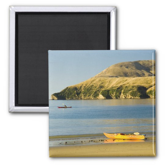 New Zealand, South Island, Marlborough Sounds. 2 Magnet
