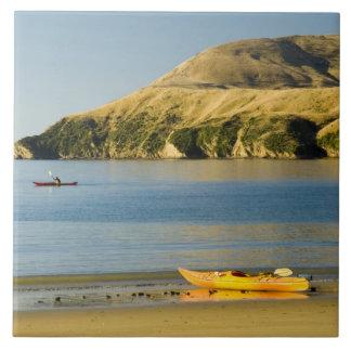 New Zealand, South Island, Marlborough Sounds. 2 Tile