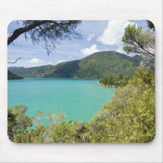 New Zealand, South Island, Marlborough Sounds. Mouse Mat