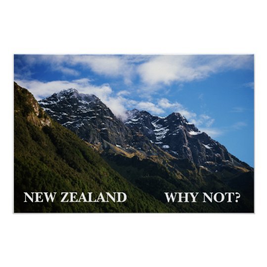 NEW ZEALAND, WHY NOT? POSTER