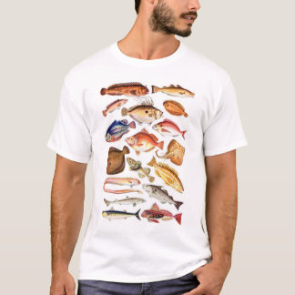 newartsweb - So Many Fish, So Little Time T-Shirt