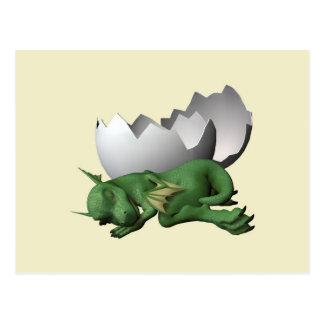 Newborn Dragon Postcards