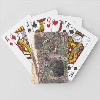 Newborn Fawn Playing Cards