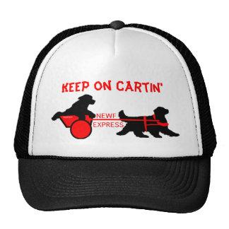 newf express  copy, Keep on Cartin' Cap