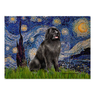 Newfie 2 - Starry Night Poster