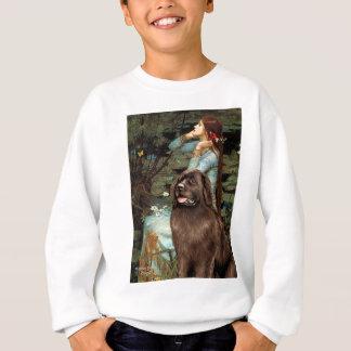Newfie (brown) - Ophelia Seated Sweatshirt
