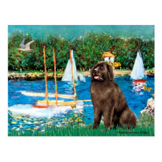 Newfie (brown) - Sailboats Postcard