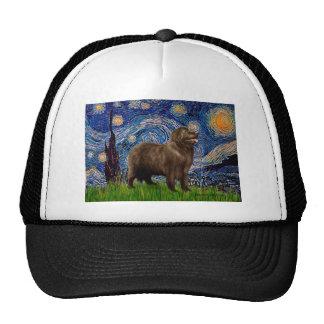Newfie (brown) - Starry Night Cap