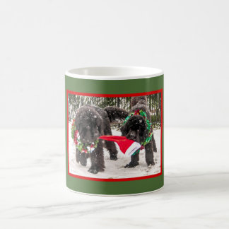 Newfie Holiday Sharing A Cup Of Joy