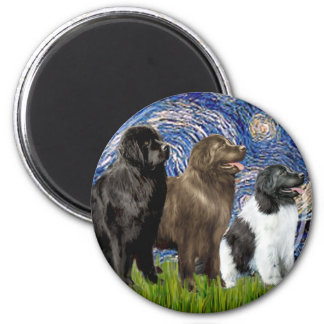 Newfie Trio - Starry Night Magnets