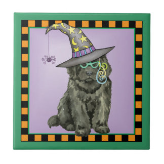 Newfie Witch Tile