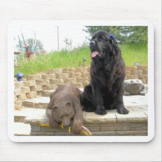 Newfoundland dog-2 yrs old mousepad