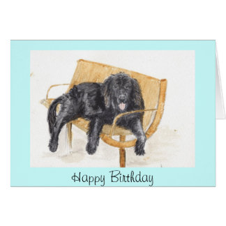 Newfoundland Dog Birthday Card