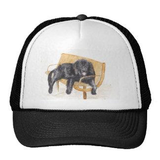Newfoundland Dog Cap