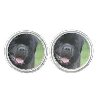 Newfoundland Dog Cuff Links