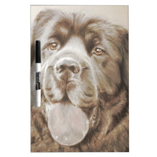 Newfoundland dog dry erase board