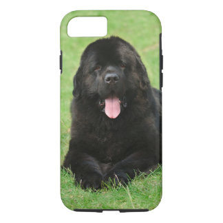 Newfoundland dog iPhone 7 case