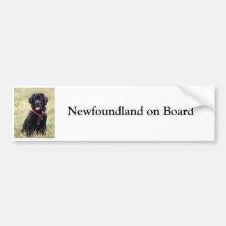 Newfoundland dog on board custom bumper sticker