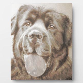 Newfoundland dog plaque