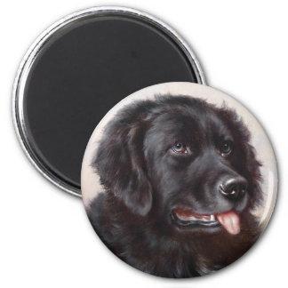 Newfoundland Dog Portrait Fridge Magnet
