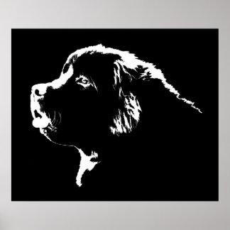 Newfoundland Dog Print Dog Art Posters Gifts
