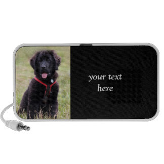 Newfoundland dog puppy cute beautiful photo, gift travel speakers