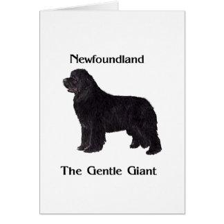 Newfoundland Dog The Gentle Giant Greeting Card