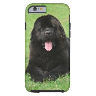 Newfoundland dog tough iPhone 6 case