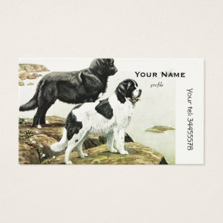 Newfoundland dogs business card