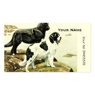 Newfoundland dogs pack of standard business cards