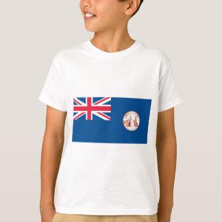 Newfoundland Flag (1904-1980) T-Shirt