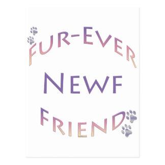 Newfoundland Fur-ever Friend Postcard